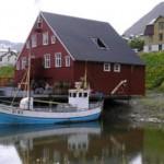 Iceland herring